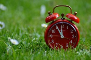 close up of red alarm clock sitting on grass