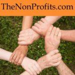 the non profits